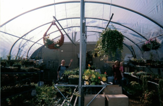 Sherrie Chastain greenhouse with seedlings and plant starts